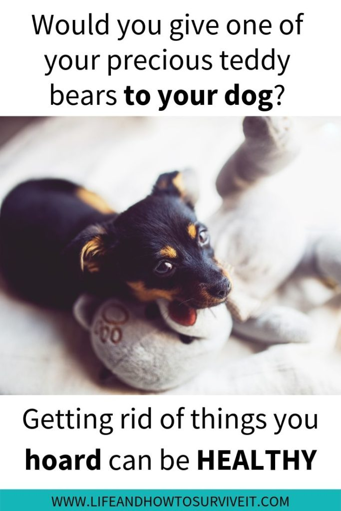 Would you give one of your teddy bears to your dog? Getting rid of things you hoard can be healthy