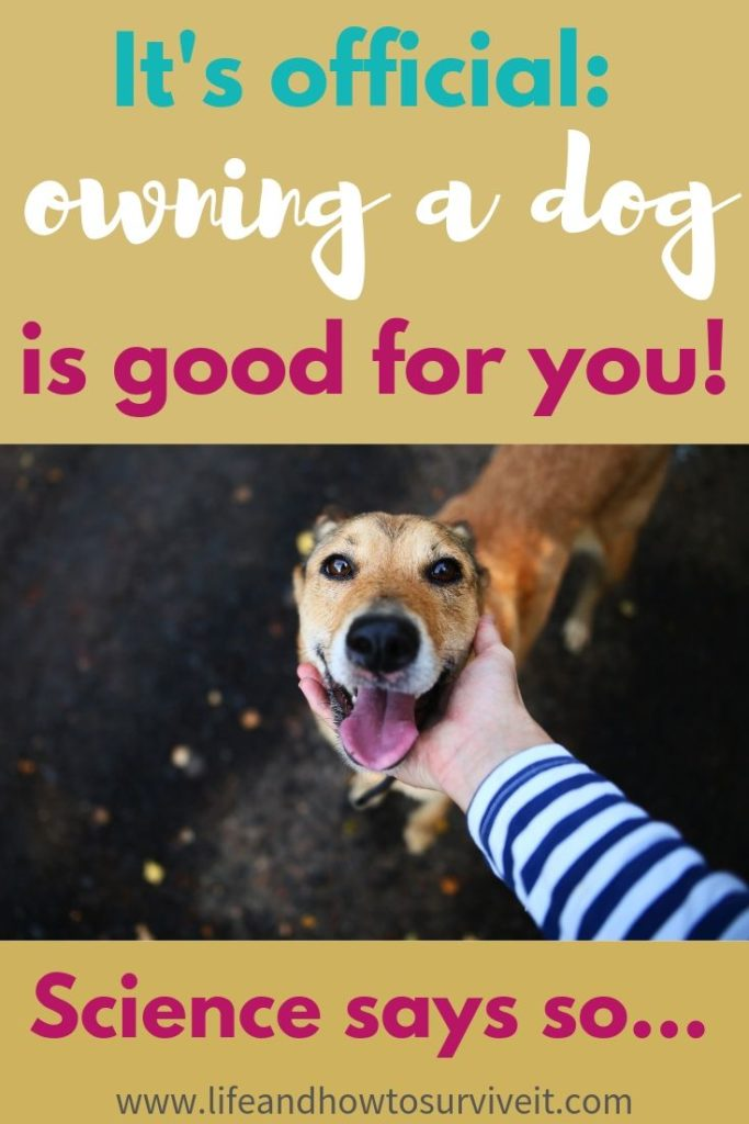 It's official: owning a dog is good for you!
