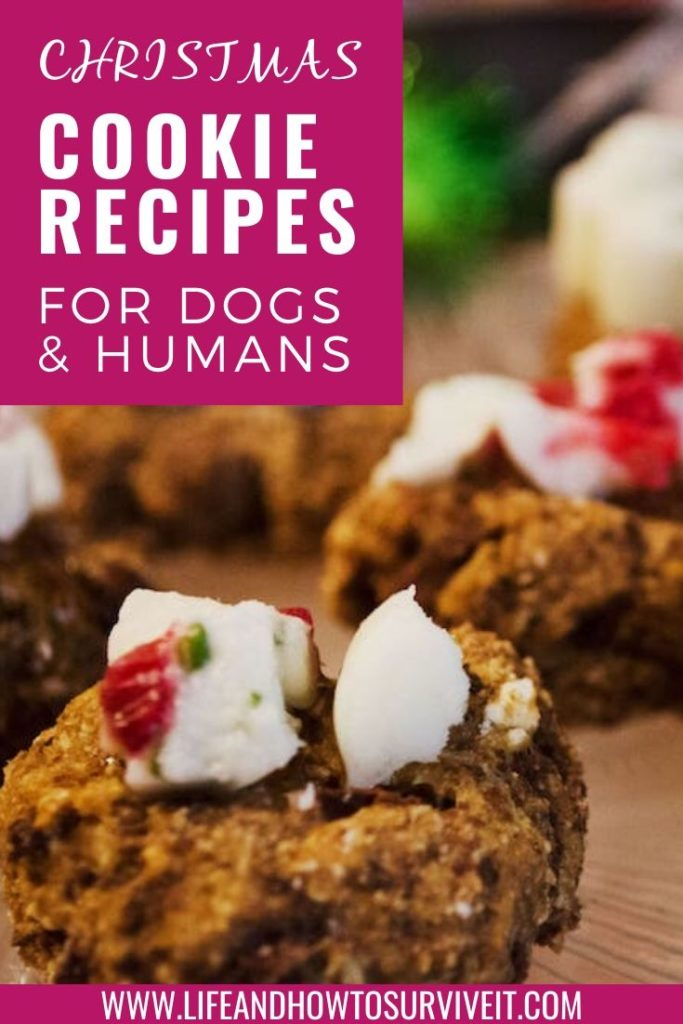 Christmas Cookie Recipes for dogs and humans