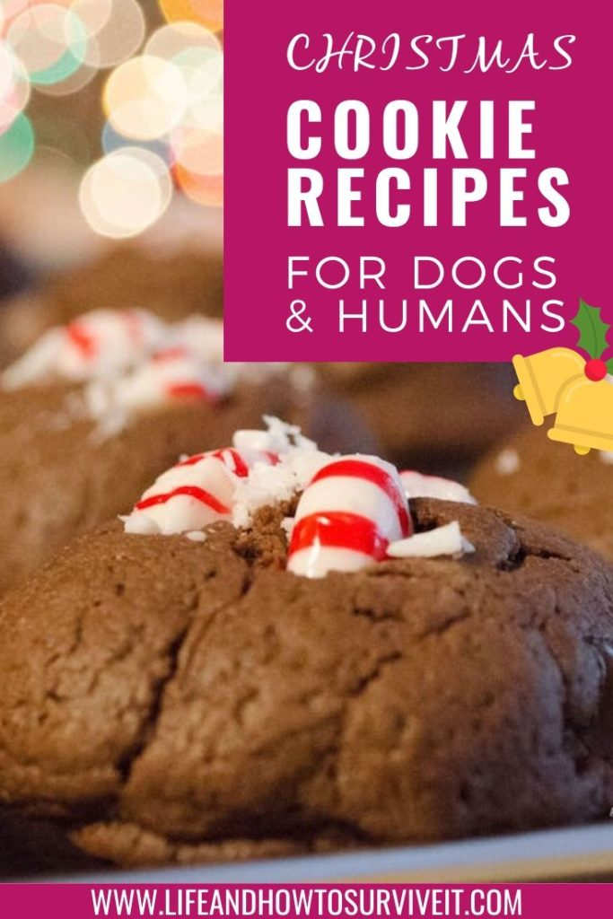 Christmas Cookies Recipe - Chocolate Peppermint Bonbons