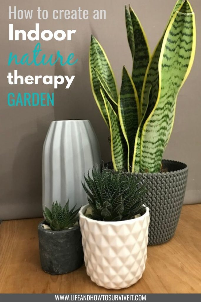 Create an indoor nature therapy garden. How indoor plants can make you happier and healthier