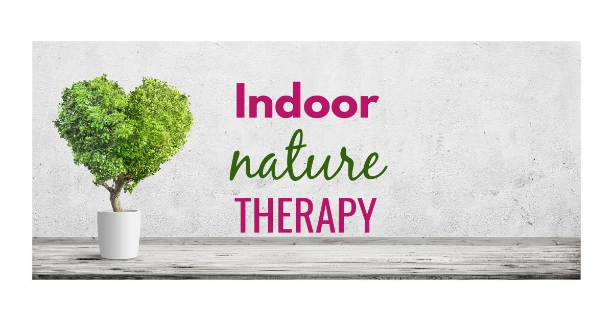 Indoor nature therapy